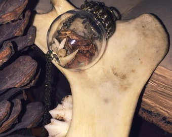 Rabbit Claws - Bone Jewelry