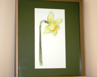 Daffodil flower original watercolour painting