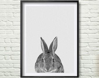 Rabbit Print, Woodlands Nursery, Rabbit Wall Art Decor, Black and White Animal Print, Black and White Nursery Woodlands Bunny *50*