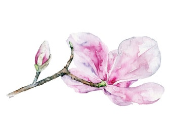 "Magnolia Painting - Print from Original Watercolor Painting, ""Magnolia 2"", Pink Magnolia, Botanical, Watercolor Flowers"