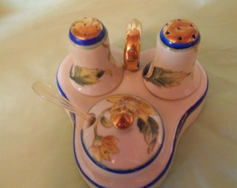 Noritake China Salt,pepper and Condiment Dish