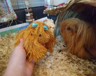Long haired guinea pig cavy soft toy pet portrait