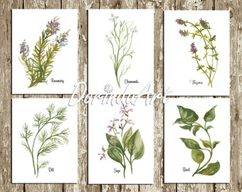 Herb Prints Printable Kitchen decor Prints Wall Art Watercolor Set of 6 Herbs Rosemary Chamomile Basil Sage Thyme Dill 16x20 8x10 11x14 5x7