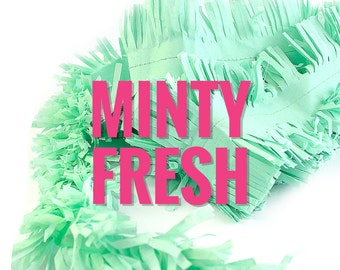 Mint Tissue Paper Garland Party Decoration |  28 Feet