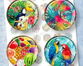"Tropical Flowers, Birds & Fruits 1"" bottle cap images 1 inch circles Digital Collage Sheet 1.5"" 1.25"" 30mm 25mm round printable download art"