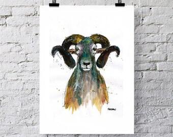 Ram Art print.  Ram Greetings card.  Ram painting, Animal art, Animal print, Animal card