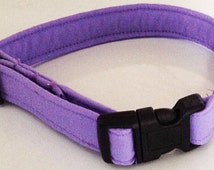 Light Purple Collar for Girl Dogs or Cats