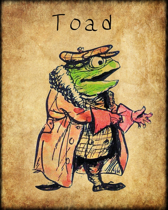 Wind In The Willows Print Childrens Books Nursery By Veryimage