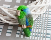 Parrotlet brooch Parrot brooch bird jewelry Parrotlet pin Colorful brooch Tt Animal jewelry Animal brooch Green gift for Her Valentines day