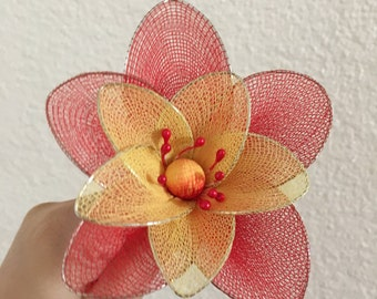 Double Petal Stocking Flower