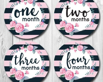 FREE GIFT Black and Pink Monthly Baby Stickers, Bodysuit Stickers, Trendy,  Baby Girl Month Stickers, New Mom Gift, floral Stickers