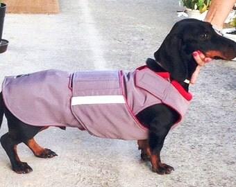 Dachshund Extra Warm Winter Dog Coat - Gray Dog Jacket with underbelly protection - Custom Dog Coat - Waterproof / Fleece - Custom made