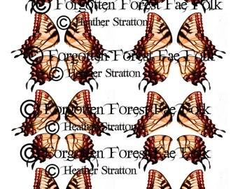 Butterfly wings, fairy wings, printable wings