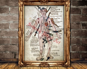 Occult anatomy, human wounds print, medieval illustration, vintage poster, macabre art, home decor, kind of weapon prints, Hannibal #372