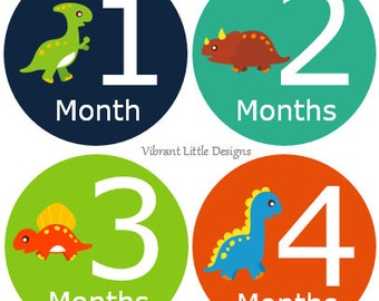 Dinosaur Baby Stickers Boy, Milestone Stickers, Month Stickers, Baby Month Stickers, Baby Stickers #42