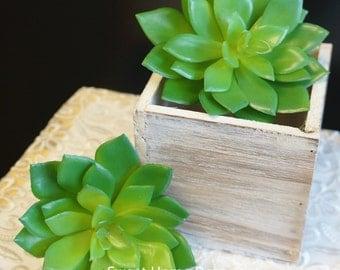 JennysFlowerShop 3.5'' Artificial Succulents Set of 2
