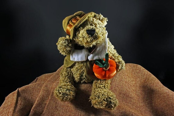Stuffed Animal, Bear, Pilgrim, Thanksgiving