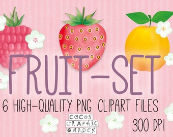 Fruit Combo, Strawberry, Rasberry, Apricot, Blossom, Floral, Vibrant,  Graphic Design Bundle, Instant Download ClipArt