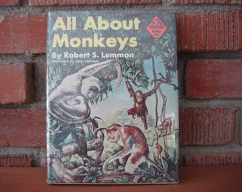 Vintage 'All About Monkeys' Book, 1958, Allabout Book Series #26, Monkeys Around the World, Great Illustrations, Marmosets to Gorillas ~
