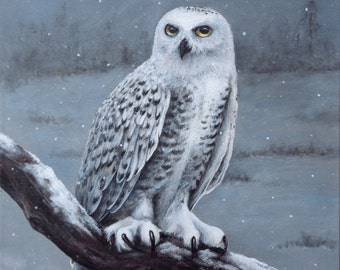 24 in. x 30 in. hand-painted acrylic painting on 3/4 in. gallery-wrapped canvas- MJ's Snowy Owl