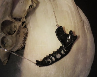 Witchy Raccoon Jaw Necklace in Black, Bone Jewelry, Moon Phases, Oddities, Curiosities, Taxidermy Jewelry, Vulture Culture