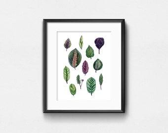 Calathea Leaves Art Print   Watercolor Plants   Colorful Leaves   Wall Decor   8x10   11x14