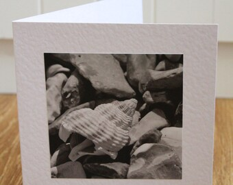 Shell greeting card - black and white print