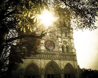 Notre Dame Print - Paris Print, Paris Wall Art, Notre Dame, Paris Decor - Notre Dame Photography Print
