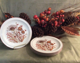 Bramble Fanci Florals Collection Salad Plates, Porcelain China Made in Japan