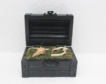 Terrarium Treasure Box with Bones