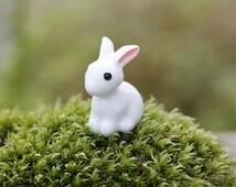 Miniature Rabbit Figurine Snow White Bunny Forrest Animal Cute tiny small Mini Terrarium Doll House Cupcake Topper decor ornament Accessory