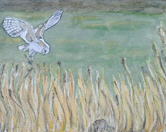 Barn owl art watercolour painting, barn owl hunting over Holcolme marshes