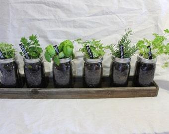 Mason Jar Herb Planters with Barnwood Tray