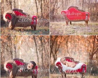 Digital backdrop Red Couch Set