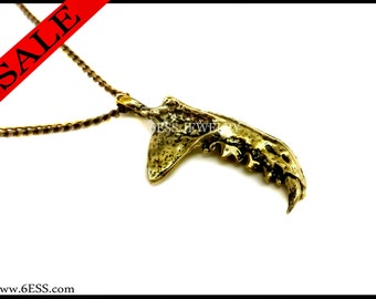 Badger Jaw Necklace,Animal Jaw Bone Pendant,Jaw Bone,Mammal Jaw Bone,