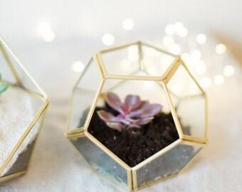 Wedding Centerpiece - Geometric Glass Terrarium - Medium Dodecahedron - Home Decoration - Small Terrarium - Gold Glass Terrarium