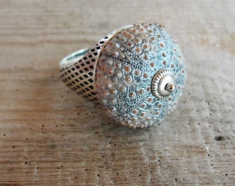 Sea Urchin Ring - Sterling Silver Grey One of a Kind size 11