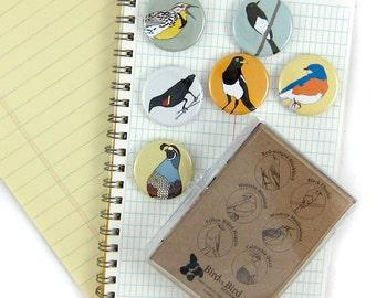 Wild Bird Magnets--Grasslands Birds--Set of 6