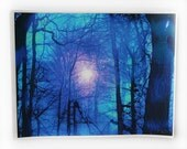 Winter sun rising, 16x20 inches, mixed media photograph with painting and drawing added, trees, blue in art, art