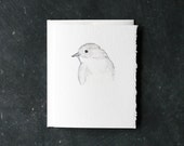PHOEBE BIRD Card and Envelope, Blank Interior, Post-consumer Recycled Paper, Gray, Grey