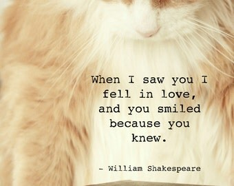 Cat photo - printable - downloadable - digital file with a quote by Shakespeare