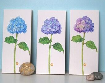 3 Hydrangea Flower Prints Mounted Wood Blocks Floral