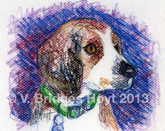 SPECIAL Original pastel drawing, dog art, collectible Texas artist, Beagle in Green Collar, framed or unframed