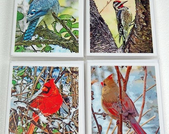 Blank Bird Note Card Set Your Choice, Blank Greeting Cards for Birdwatchers or Nature Lovers, Male & Female Cardinals, Blue Jay - Sapsucker