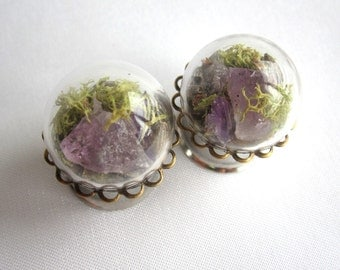 "Pair of Real Amethyst, Lavender, and Moss Statement Plugs - Terrarium Gauges - 6g, 4g, 2g, 0g, 00g, 7/16"", 1/2"", 9/16"", 5/8"", 3/4"", 7/8"", 1"""