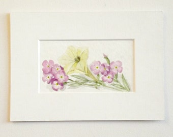 spring pink white flowers original watercolor painting matted