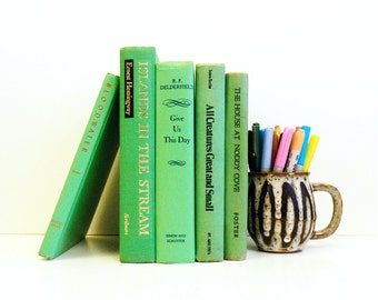 Lime Green Vintage Book Collection / Retro Vintage Book Decor / Rainbow Books / Instant Collection