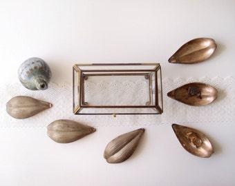 vintage brass & glass display case / trapezoidal Terrarium / geometric Trinket Box