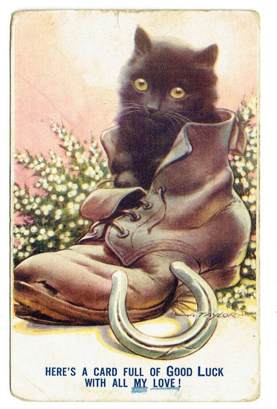 Black Kitten in an Old Boot Postcard - Good Luck Comic Postcard Printed in U.S.A. - Deltiology