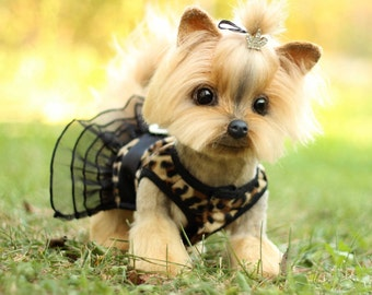 Yorkshire Terrier (made to order)